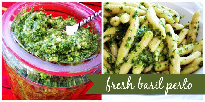 Italian Sauce Recipes