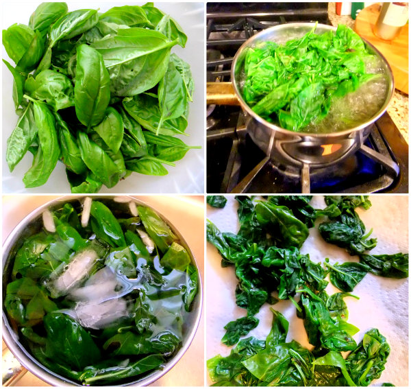 making basil oil