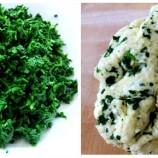 Homemade Kale Ricotta Gnocchi
