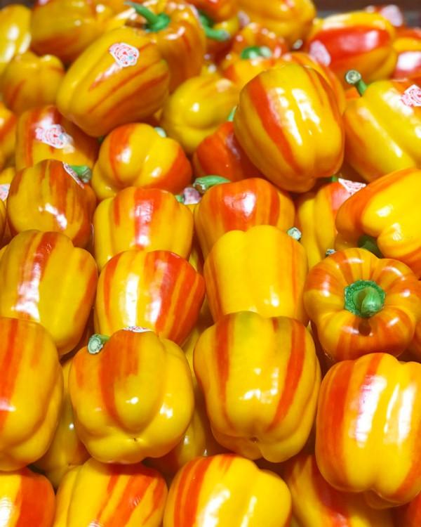 aloha peppers