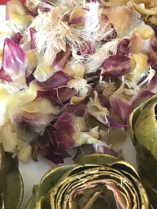 prepping artichokes